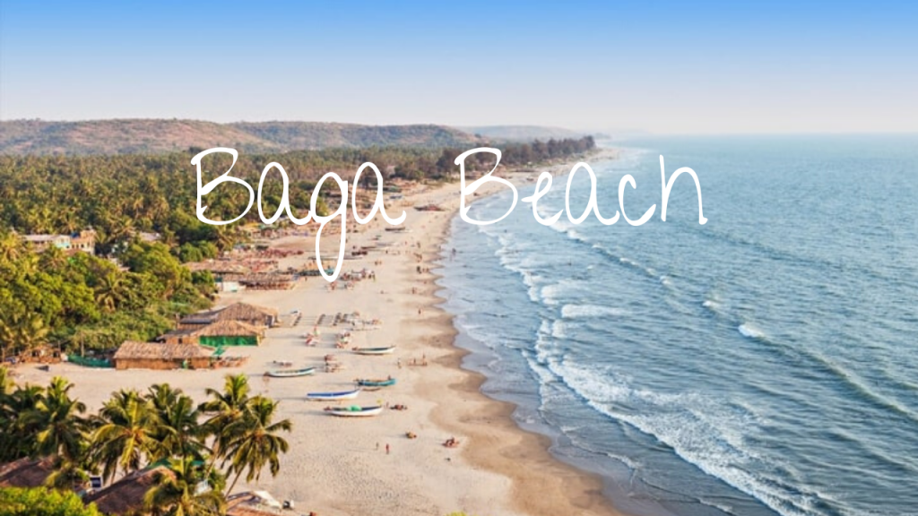 Baga one of the most loved beaches by party-goers and food lovers lies on the Baga