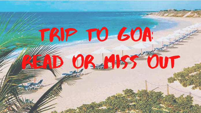 This Study Will Perfect Your TRAVEL TRIP TO GOA: Read or Miss Out